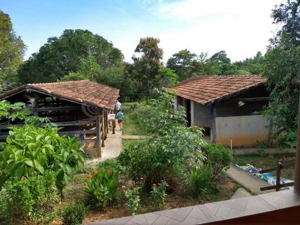 Sítio à venda com 3 dormitórios em Ribeirão do bagre, Felixlândia cod:672822 - Foto 10