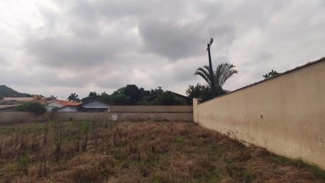 Terreno para alugar com 0 dormitórios em America, Joinville cod:08859.001 - Foto 4