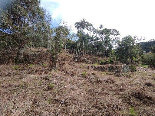 Terreno à venda em Vargem grande, Teresópolis cod:TE0036 - Foto 14