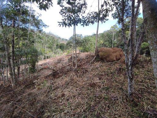 Terreno à venda em Vargem grande, Teresópolis cod:TE0036 - Foto 8