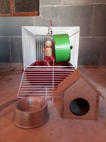 Kit Hamster Completo - Gaiola, brinquedos e mais! - Foto 3