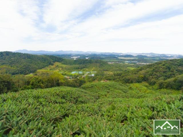 0361 Excelente área rural no Bairro Vila Nova - Foto 13