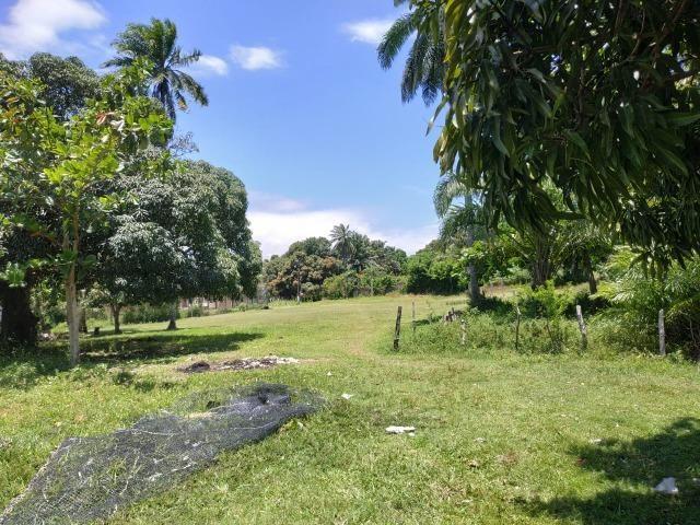 Terreno na ilha de Catu de Berlinque a partir de 7.000,00 - Foto 19