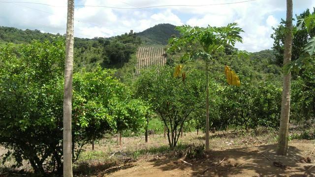Sítio dos sonhos seu pedaço do Paraíso com 7 hectares por 150 mil - Foto 6