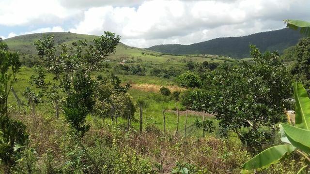 Sítio dos sonhos seu pedaço do Paraíso com 7 hectares por 150 mil - Foto 2