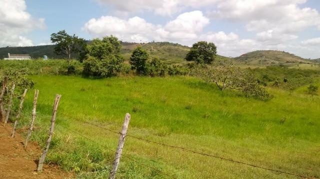 Propriedade de 7 hectares, escriturada, em Dois Leões-PE! - Foto 7