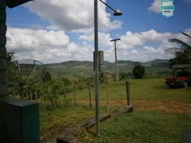 Fazenda de 278 hectares, entre Ubaitaba e Travessão - Foto 12
