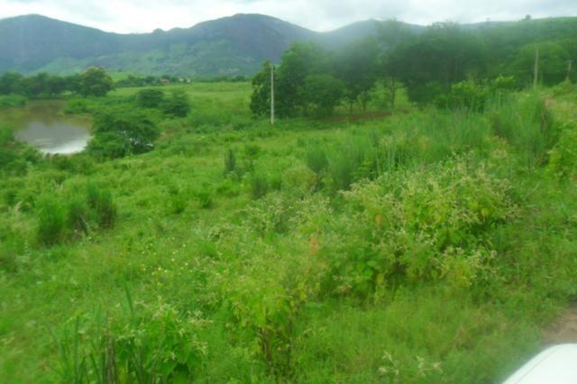 Fazenda 35 alqueires baixo guandu es - Foto 19