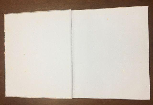 Coleção Grandes Mestres da Pintura Completa - 20 Volumes - Foto 4