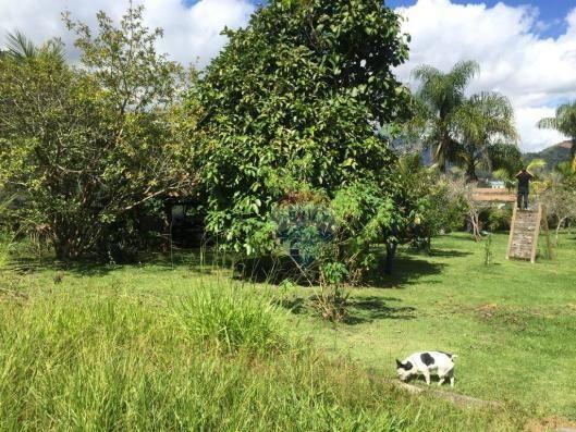 Terreno na granja brasil! - Foto 5