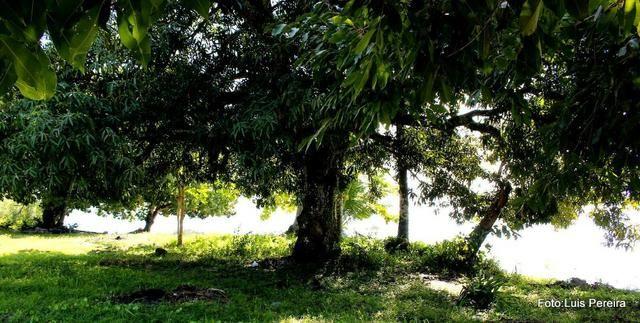 Terreno na ilha de Catu de Berlinque a partir de 7.000,00 - Foto 11