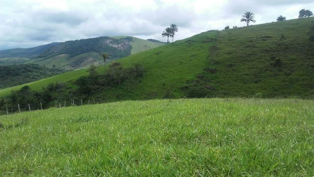 Linda Fazenda em Joaquim Gomes 60 hectares apenas 750 mil - Foto 2