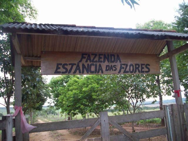 Cód. 5284 - Sítio em Cocalzinho de Goiás - Foto 4