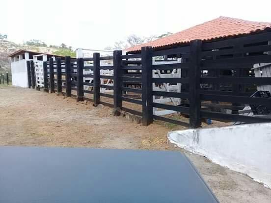 Fazenda de 791 tarefas, com sede nova e curral de ripão coberto com embarcador e balança - Foto 4