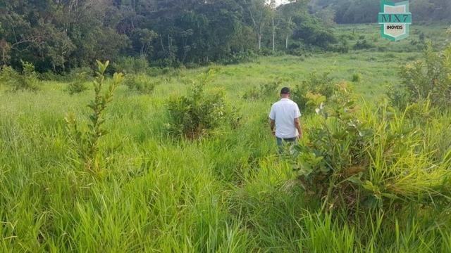 Barro Preto-BA. Fazenda de 167 Hectares. produção de cacau - Foto 17