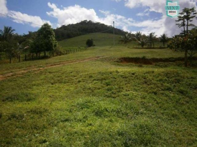 Fazenda de 278 hectares, entre Ubaitaba e Travessão - Foto 19