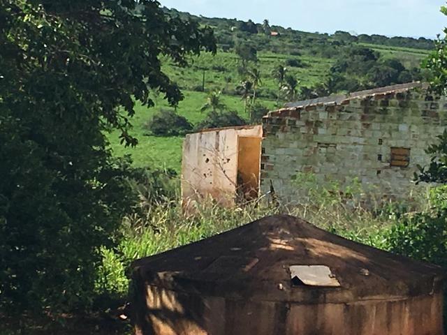 REALISE SEU SONHO CHÁCARA COM 2 Tarefas e 2 Casas - Foto 16