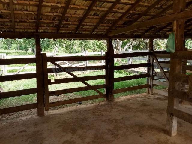 Sítio à venda com 3 dormitórios em Ribeirão do bagre, Felixlândia cod:672822 - Foto 5
