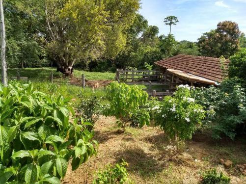 Sítio à venda com 3 dormitórios em Ribeirão do bagre, Felixlândia cod:672822 - Foto 11