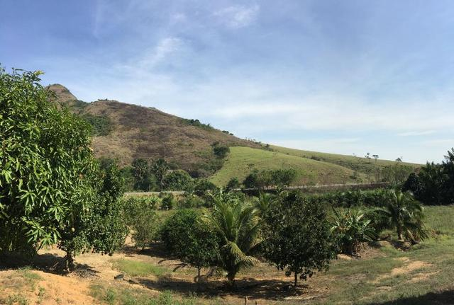Terreno / Lote em Serra - Foto 13