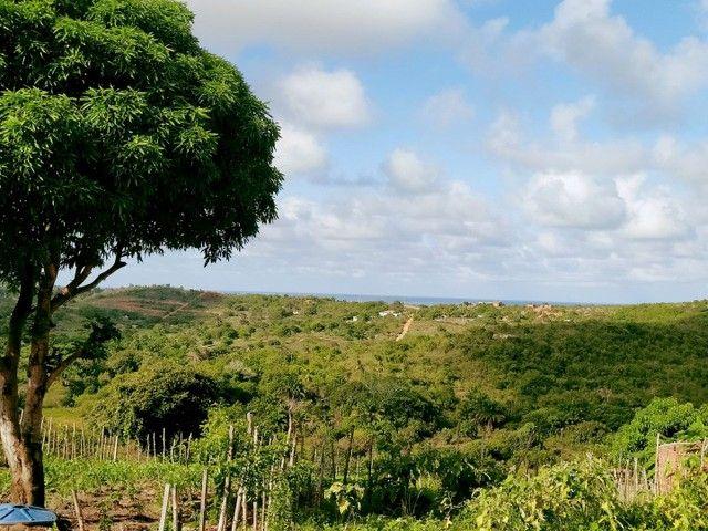 Oportunidade - Casa em Itamaracá - Água potável - Quintal - Ventilada -  - Foto 11