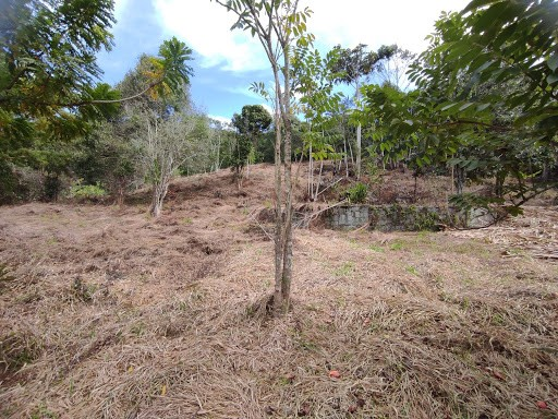 Terreno à venda em Vargem grande, Teresópolis cod:TE0036 - Foto 17