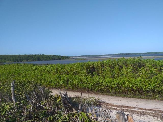 Sítio Atins 13 hectares na frente do rio - Foto 3
