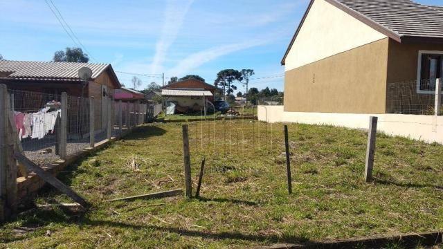 Terreno em canela, bairro vista do vale, 250 m² - Foto 2