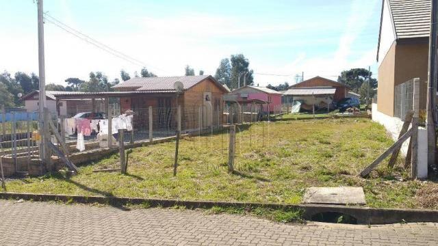 Terreno em canela, bairro vista do vale, 250 m² - Foto 4