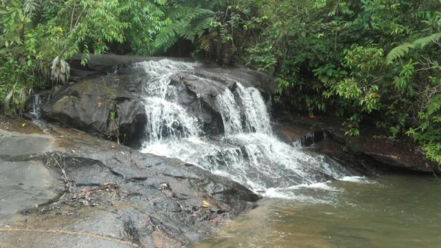 Linda Fazenda em Joaquim Gomes 60 hectares apenas 750 mil - Foto 10