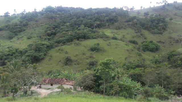 Linda Fazenda em Joaquim Gomes 60 hectares apenas 750 mil - Foto 11