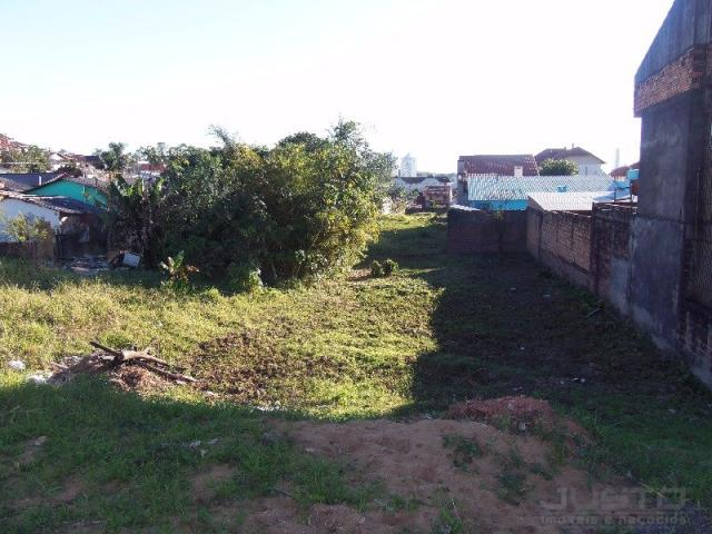 Terreno à venda em Santa teresa, São leopoldo cod:9342