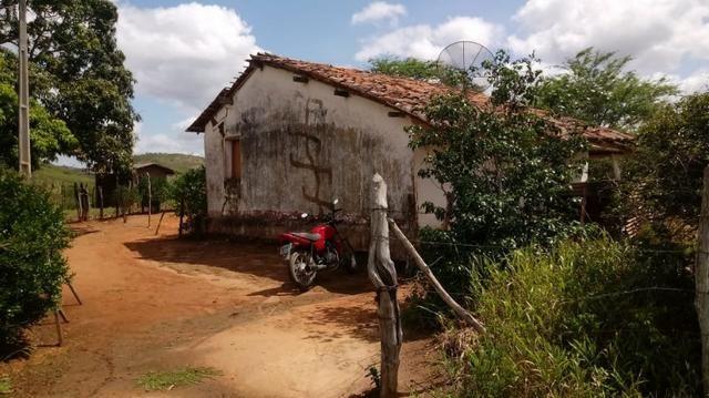 Propriedade de 7 hectares, escriturada, em Dois Leões-PE!