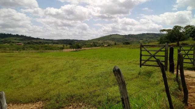 Propriedade de 7 hectares, escriturada, em Dois Leões-PE! - Foto 10