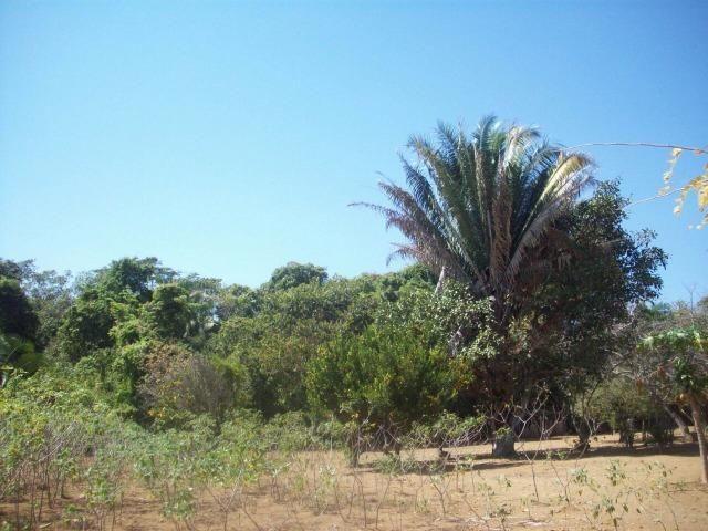 Cód. 5284 - Sítio em Cocalzinho de Goiás - Foto 17