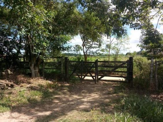 Fazenda para venda em paudalho, guadalajara - Foto 18