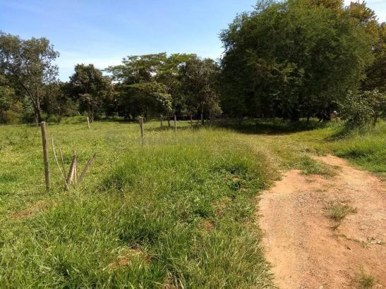 Sítio à venda com 3 dormitórios em Ribeirão do bagre, Felixlândia cod:672822 - Foto 2