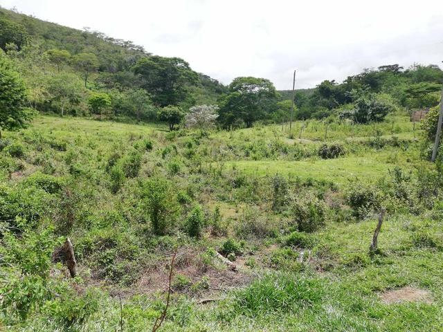 Oportunidade Fazenda de 175 hec por 430 mil - Foto 10