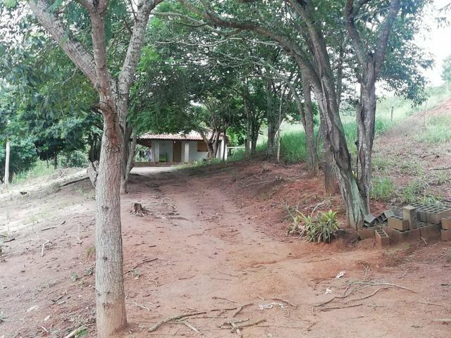Oportunidade Fazenda de 175 hec por 430 mil - Foto 2