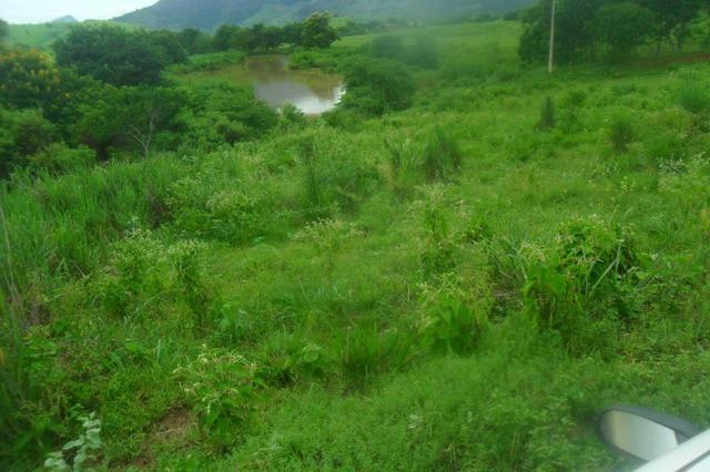 Fazenda 35 alqueires baixo guandu es - Foto 18