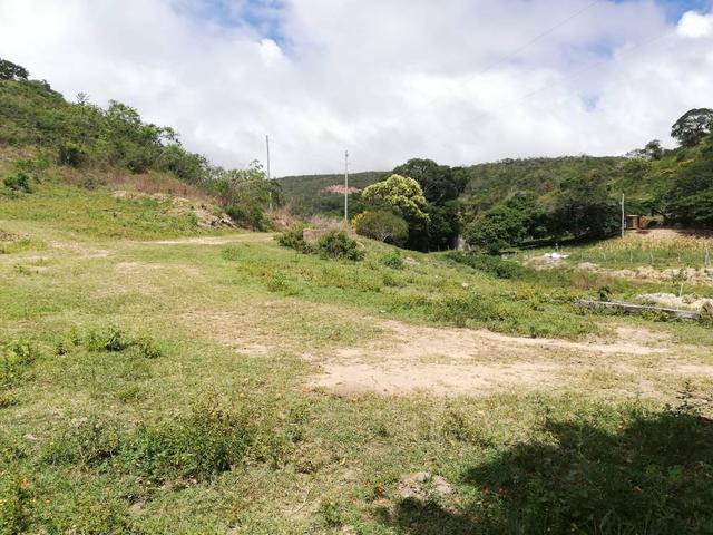 Oportunidade Fazenda de 175 hec por 430 mil - Foto 3