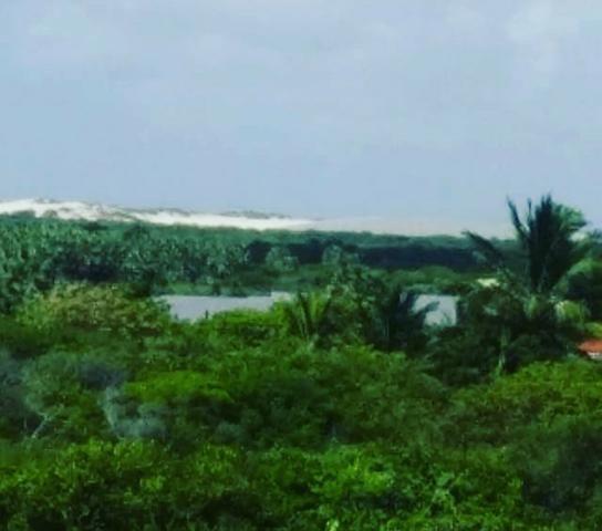 Sítio Atins 13 hectares na frente do rio - Foto 6