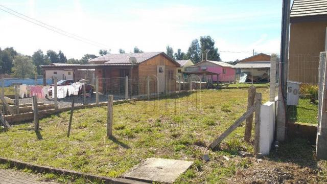 Terreno em canela, bairro vista do vale, 250 m² - Foto 3