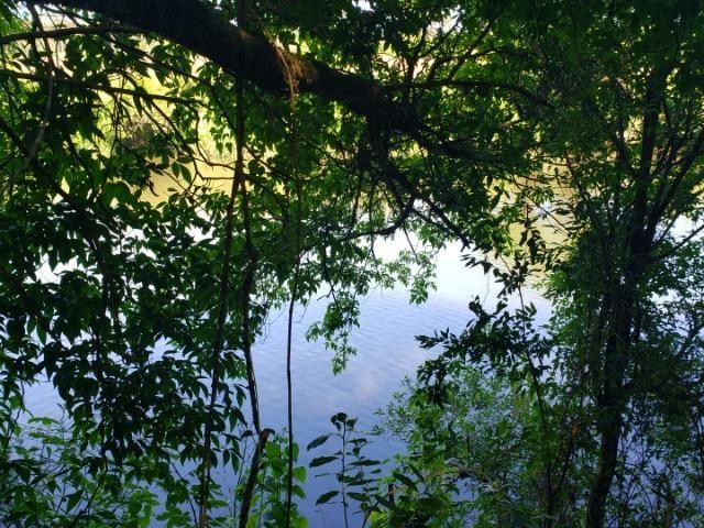 Sítio as Margens de um Lindo Rio - Foto 2