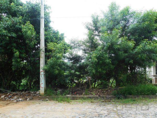 Terreno à venda em Campestre, São leopoldo cod:6913