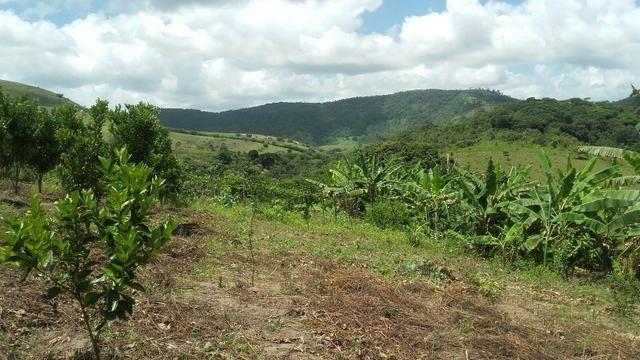 Sítio dos sonhos seu pedaço do Paraíso com 7 hectares por 150 mil - Foto 13