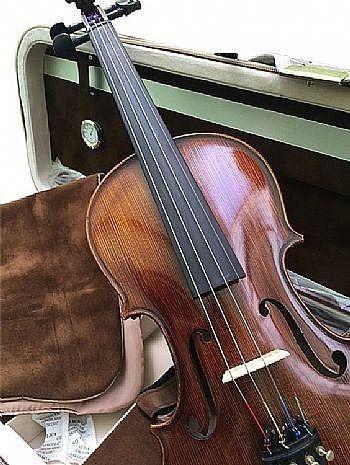 Violino Profissional de autor desconhecido
