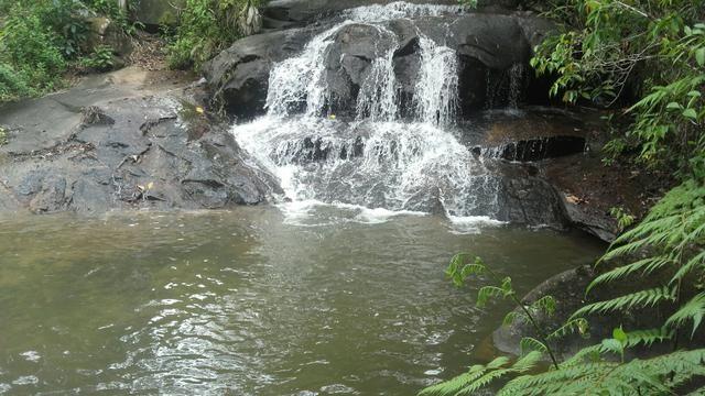 Linda Fazenda em Joaquim Gomes 60 hectares apenas 750 mil - Foto 15