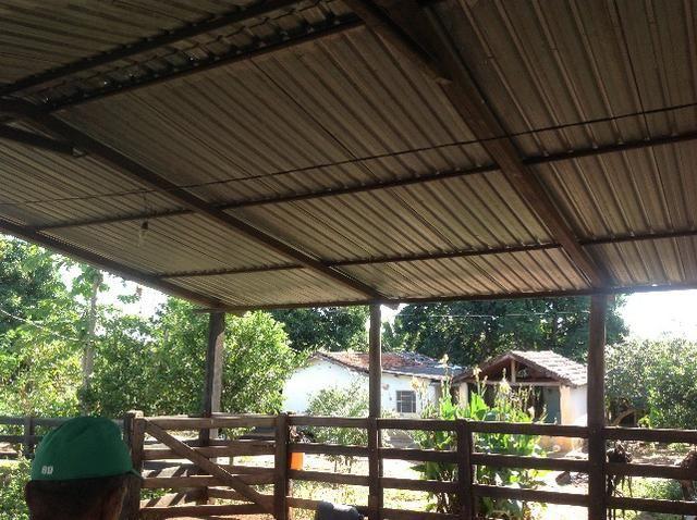 Chácara 3 alqueires e 75 litros,curral,represa,casa,3 alqueires arrendado para planta. - Foto 12