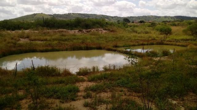 Propriedade de 7 hectares, escriturada, em Dois Leões-PE! - Foto 6